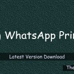 WhatsApp Prime 1.2.10 Latest Version Download - TheGBApps
